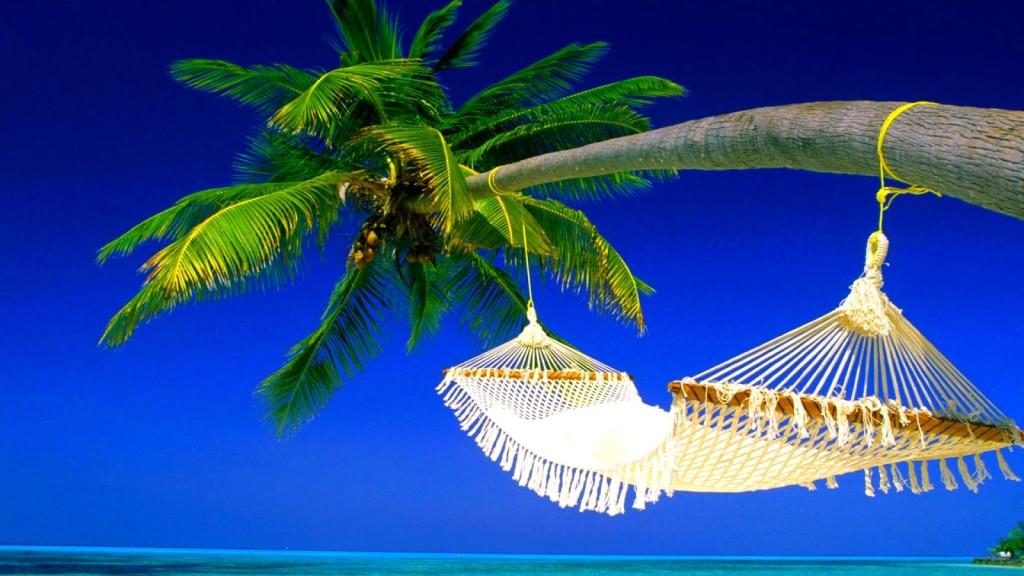 summer relax wallpaper (5)